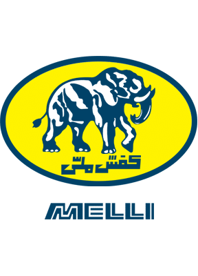 Melli Shoes Company