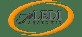 LEDI Anatomic